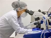 חוקרת עובדת על החיסון לקורונה של אסטרה-זנקה / צילום: MinPro/Handout / Latin America News Agency, רויטרס