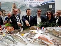 עמנואל מקרון מבקר בשוק הדגים בפריז בימים בטוחים יותר / צילום: Benoit Tessier, Associated Press