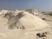 צילום: PHOTO ISRAEL