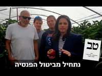 סרטון התעמולה של שקד, שבו היא מציעה לפגוע בזכויותיהם של עובדים זרים / צילום: פייסבוק