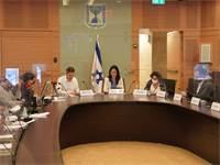 ועדת הכלכלה / צילום: דני שם טוב- דוברות הכנסת