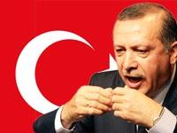 רג`פ טייפ ארדואן, ראש ממשלת טורקיה / צלם רויטרס