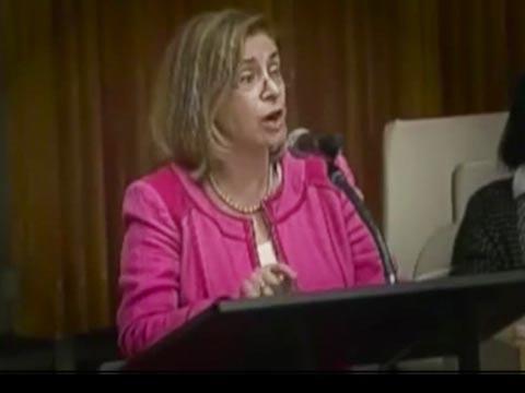 """אן באייפסקי נאום באו""""ם/ צילום: מהוידאו"""