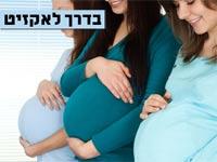 """נשים בהיריון, מיזם פוריות / צילום: יח""""צ"""
