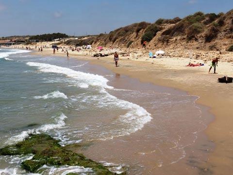 בנייה בחוף הים, ישראל / צילום: וואלה news