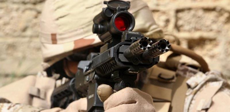 """רובה סער, גלבוע Snake, כלי נשק / צילום: יח""""צ סילבר שאדו"""