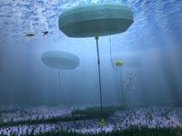 """ייצור חשמל מגלים תת ימיים Carnegie Wave Energy אוסטרליה / צילום: יח""""צ"""