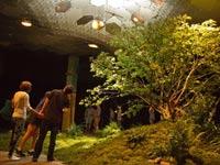 פארק תת קרקעי בניו יורק, Lowline, ריאות ירוקות, חדשנות / צילום: וידאו