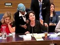 ח``כ חנין זועבי, דיון וועדת החינוך של הכנסת / צילום: ערוץ הכנסת