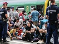 פליטים סוריים באירופה, משבר הגירה / צילום: וידאו