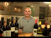 קיפניס, השוואת יינות / צילום: גלובס טיוי
