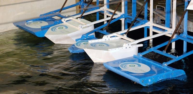"""חשמל מגלי ים אקו וויב / צילום: יח""""צ"""