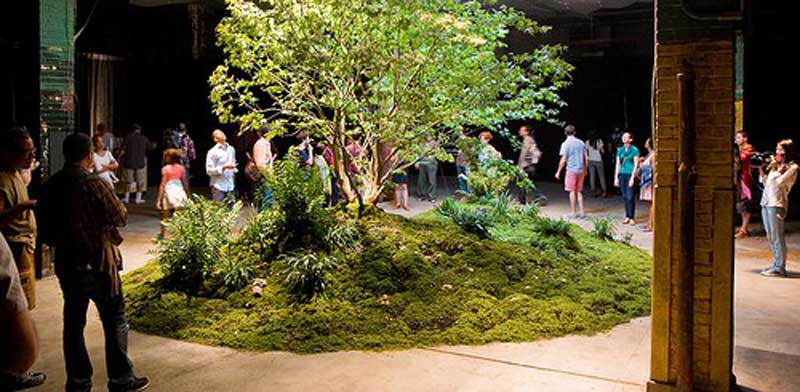פארק תת קרקעי בניו יורק Lowline park / צילום: וידאו