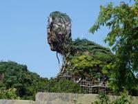 פארק שעשועים, אווטאר, פנדורה, וולט דיסני / צילום: וידאו