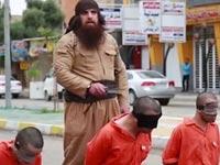 """דאע""""ש, הוצאות להורג, הבולדוזר מפלוג'ה, סוריה, עיראק, טרור, צבא סוריה / צילום: וידאו"""