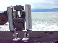 רובוט של גוגל / צילום: מהוידאו