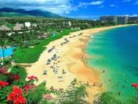 האי מאווי הוואי / צילום: מהוידאו