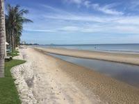 תאילנד חוף/ צילום: וואלה NEWS