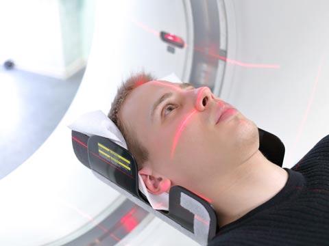 חקר המוח- חיים / צילום: שאטרסטוק