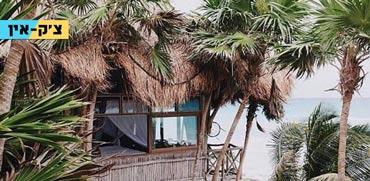 צ'ק אין , מלון על עצים / צילום: יחצ Papaya Playa