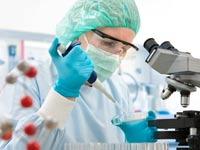 בדיקות מעבדה/ צילום: שאטרסטוק