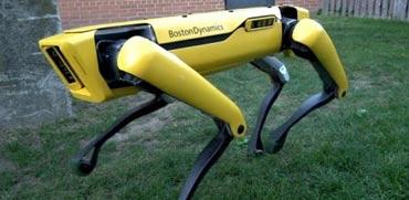 רובוט ספוט מיני/ צילום: מתוך הוידאו BostonDynamics