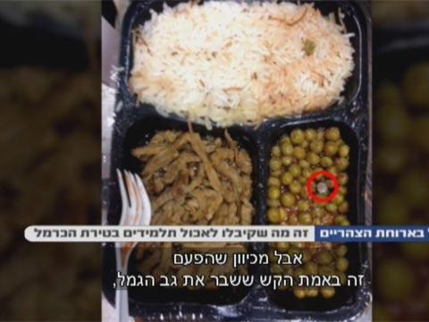 תולעים באוכל/צילום: הכל כלול ערוץ 10