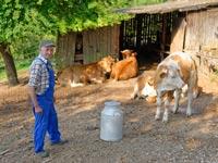חווה חקלאית/ צילום: שאטרסטוק
