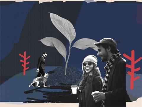צוואה/עיצוב תמונה: אפרת לוי