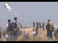 טרור העפיפונים/ צילום :חדשות 2