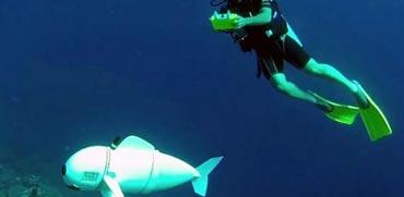 פורץ דרך: רובוט דמוי דג החוקר את מעמקי הים