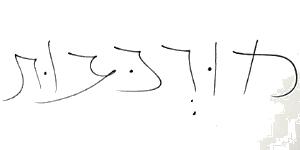 כתב ידה של עליזה בלוך