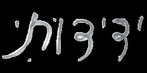 כתב ידה של מיכל נגן