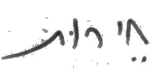 כתב ידה של אמי פלמור