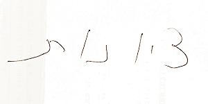 כתב ידו של איל וולדמן