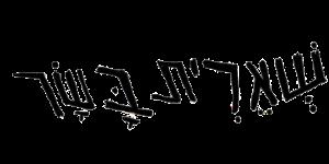 כתב ידו של זיו שמח