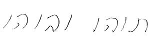 """כתב ידה של ניל""""י גולדפיין"""