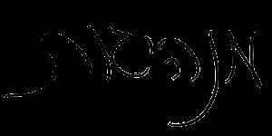 כתב ידה של שרן השכל