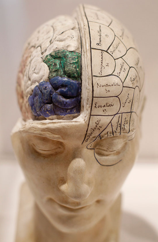 """""""למוח יש נטייה לחזור על המוכר, אבל צריך להרגיל אותו למצב של חוסר סדר"""""""