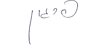 כתב ידו של יאיר המבורגר