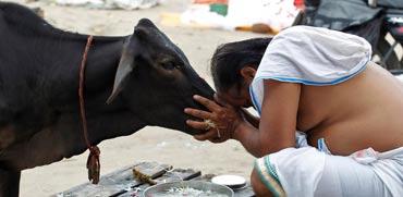 מסביב לגלובוס -הודו / צילום: רויטרס