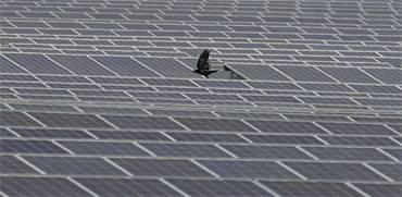 חווה סולארית / צילום: רויטרס