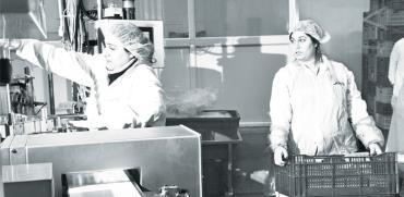 מפעל שום של חברת דורות, קיבוץ דורות. יוצאות לפנסיה מאוחרת / צילום: רפי קוץ