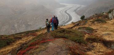 קרחון אלטש / צילום:רוני ערן