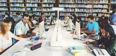סטודנטים בספריה / צילום: שאטרסטוק