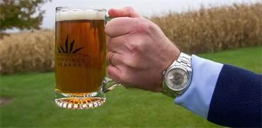 פיתוח חדש: בירה ממסטלת עשויה מקנאביס
