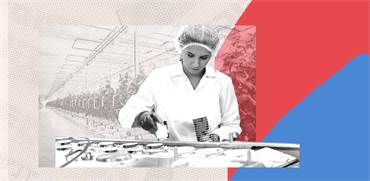 מהנדסים את מזון העתיד/ עיצוב תמונה אפרת לוי