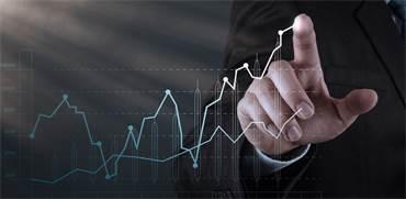 צמיחה / צילום: Shutterstock
