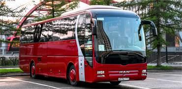 אוטובוס הסעות / צילום: Shutterstok