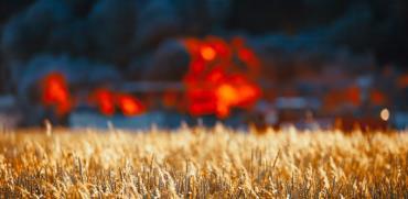 לא רק עפיפונים: הטרור החקלאי כולל גם השחתת ציוד, ונדליזם וגניבות